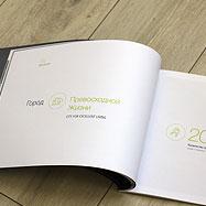 Разработка креативной концепции брошюры