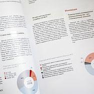 Годовой отчет 2009