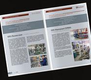 Вестник финансовой поддержки МСП